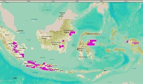 Peta wilayah operasi PT Pertamina EP (bagian yang diberi warna ungu, kuning, biru, dan merah muda).