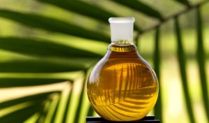 Pure Palm Oil (PPO).