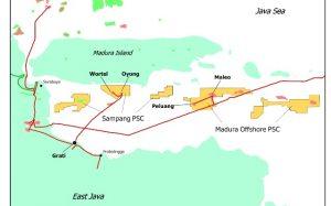 Peta lapangan gas Peluang di Blok Madura Offshore, lepas pantai Jawa Timur.