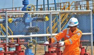 Pemerintah menurunkan harga gas untuk industri tertentu sebagai insentif untuk menggerakkan pertumbuhan ekonomi