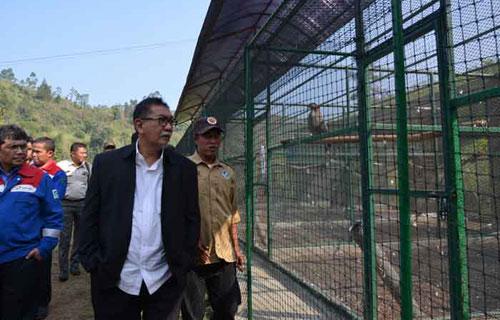 Wakil Gubernur Jawa Barat Deddy Mizwar meninjau Pusat Konservasi Elang beberapa waktu lalu.