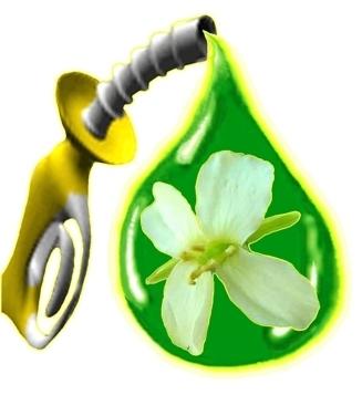 Pertamina dan Toyota Studi Bersama Kembangkan Biofuel