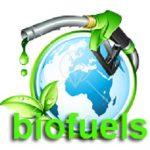 Subsidi BBM Hambat Pengembangan Biofuel