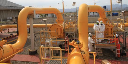 Harga Gas Kawasan Industri Batam Naik Jadi US$7,3 per MMBTU