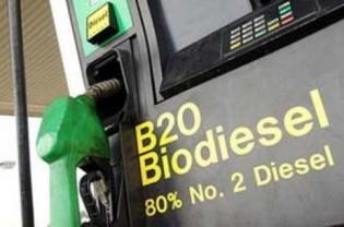 Green Refinery Plaju dan Dumai akan Serap 15 Juta Ton CPO Per Tahun