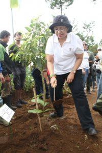 Direktur Utama Medco E&P Frila B Yaman brsama karyawan Medco menanam 1.000 pohon di Taman Nasional Gunung Gede Pangrango.