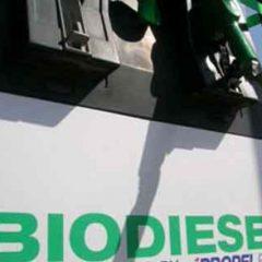 Kementerian ESDM Incar Delapan Tangki Minyak KKKS untuk Dukung B20