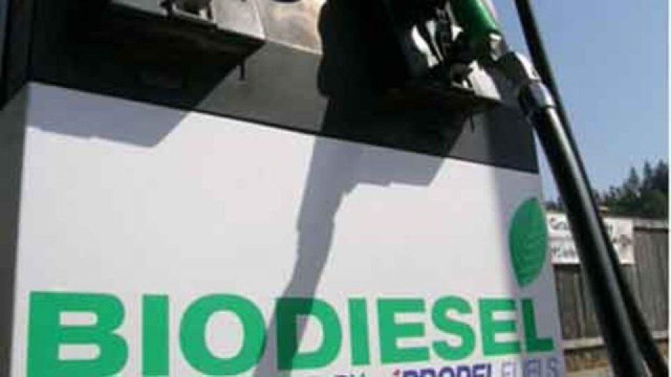 Harga Biodiesel September Naik Jadi Rp 6.929 Per Liter