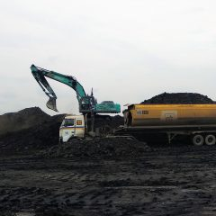Kementerian ESDM Tolak Sanksi Pembayaran Royalti Bagi Perusahaan Tak Penuhi DMO Batu Bara