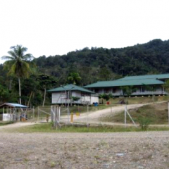Bumi Minerals Percepat Konstruksi Proyek Citra Palu dan Gorontalo Minerals