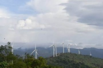 Hingga Akhir 2019, PLN Kejar Tambahan Pembangkit EBT Sebesar 736 MW