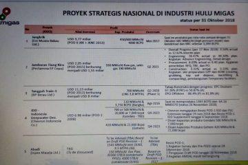 Inilah Lima Proyek Strategis Nasional di Industri Hulu Migas