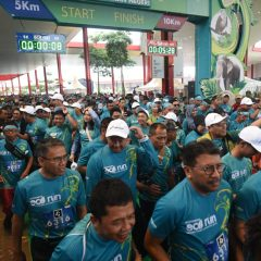 Pertamina Eco Run 2018 Dukung Pelestarian Gajah Sumatera dan Elang Bondol