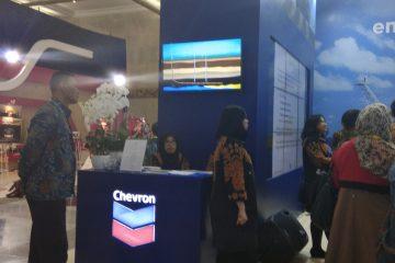Pemerintah Minta Chevron Gunakan Gross Split di Proyek IDD