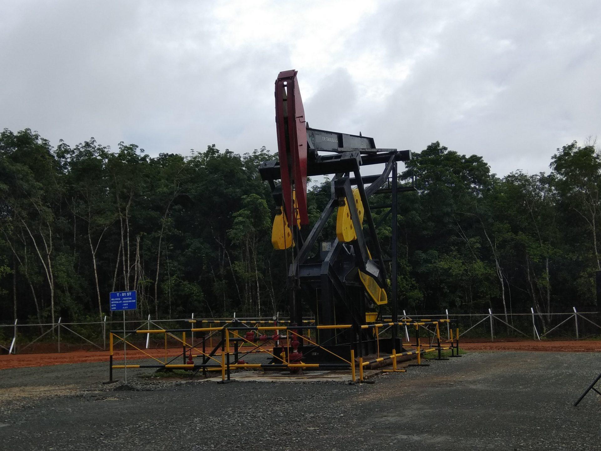 Tanah di Blok Rokan Terkontaminasi Peninggalan Chevron, Tanggung Jawab Pemulihan Beralih ke Pertamina?