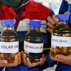 Kilang Plaju Produksi Biosolar 200 Ribu KL Per Bulan