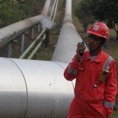 Lumut Balai Beroperasi, Kapasitas Pembangkit Panas Bumi Nasional Jadi 2.003,5 MW