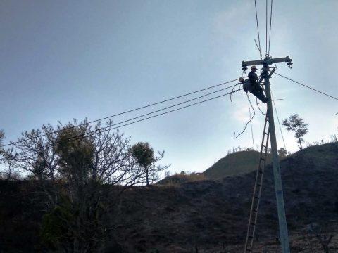 Kejar Rasio Elektrifikasi di NTT, PLN Gratiskan Sambungan Listrik 11.000 Kepala Keluarga