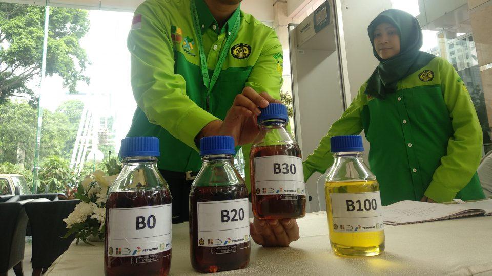 Sanksi Pengemplang Program Mandatory Biodiesel Tidak Berjalan, Ini Alasannya