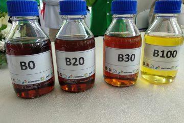 2021, Pertamina Targetkan Produksi Enam Ribu Barel Per Hari B100