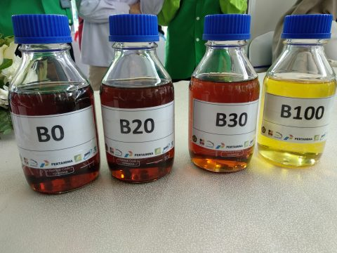 Indonesia Cari Dukungan Internasional untuk Gunakan Biodiesel