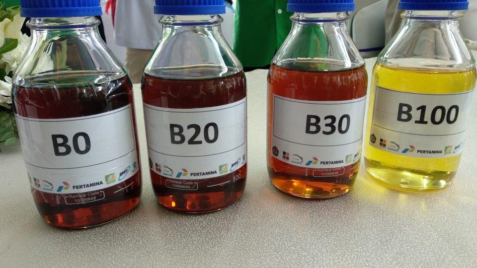 Pencampuran Biosolar Tidak Konsisten, Jonan Ancam Berlakukan DMO Biodiesel