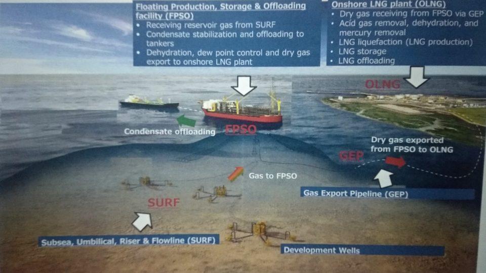 PGN dan PLN Jadi Konsumen Prioritas Dalam Negeri Gas Masela