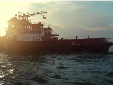 Pendapatan Semester I Turun 2%, Ekspansi Armada Topang Kinerja Pelita Samudera