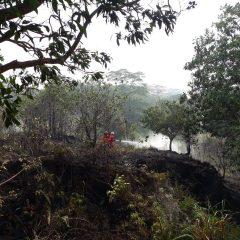 Tak Hanya Mencari dan Mengebor Minyak, Pertamina EP Pun Tanggap Darurat Karhutla