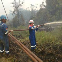 Terjunkan Tim Operasi Darurat, Fasilitas Operasi PHE Kampar Telah Aman dari Karhutla