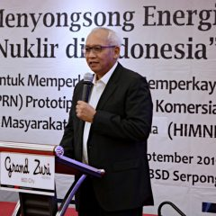 Prototipe PLTN Skala Komersial Masuk Prioritas Riset Nasional