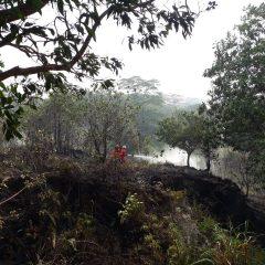 Tiga Asset Pertamina EP Ikut Tanggulangi Karhutla