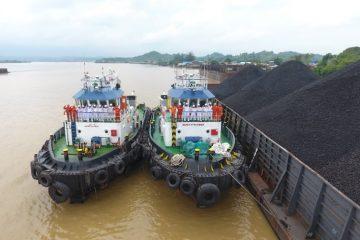 Segmen Bulk Carrier Pacu Peningkatan Pendapatan Pelita Samudera